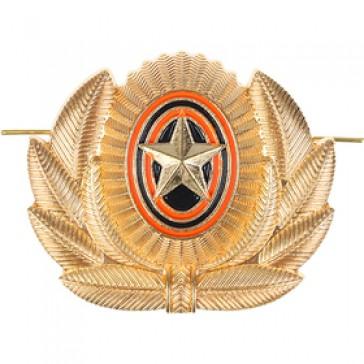 Кокарда РА со звездой в обрамлении золотистая